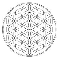 symbole_fleur_de_vie.jpg